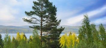 Scandinavian lake Royalty Free Stock Photography