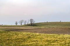 Scandinavian landscape in Scane County stock image