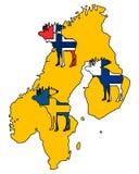 Scandinavian moose Royalty Free Stock Photo