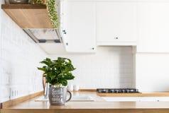 Scandinavian stil för modernt vitt kök arkivbild