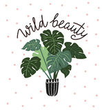 Scandinavian style illustration with monstera, vector print design with lettering - `wild beauty`. stock illustration