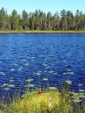 Scandinavian Summer landscape. Beautiful Scandinavian summer landscape with lake in Sweden Royalty Free Stock Image
