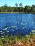 Scandinavian Summer landscape. Beautiful Scandinavian summer landscape with lake in Sweden Stock Photos