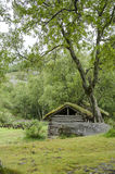 Scandinavian traditional house with green roof. Ancient building traditions Stock Images