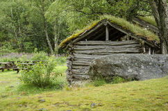 Scandinavian traditional house with green roof. Ancient building traditions Stock Photos