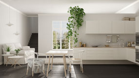 Scandinavian white minimalist living with kitchen, open space, o. Ne room apartment, modern interior design Royalty Free Stock Photos