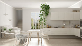 Scandinavian white minimalist living with kitchen, open space, o. Ne room apartment, modern interior design Royalty Free Stock Image