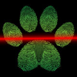 Scanned paw print Royalty Free Stock Photography