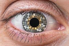 Scannen des menschlichen Auges und Anerkennung - biometrische Identifizierung lizenzfreie stockfotos