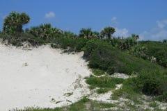 scape дюны Стоковые Фотографии RF