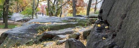 Scape Central Park утеса осенью Стоковая Фотография RF