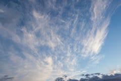 Scape de ciel de cirrus photo libre de droits