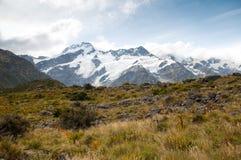 Scape de la montaña del cocinero del Mt., Nueva Zelandia Fotografía de archivo