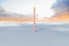 Scape de la tierra Nevado con el polo ilustración del vector