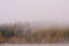Scape de niebla del lago y colores vibrantes del otoño en árboles Imagenes de archivo