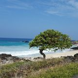 Scape de plage Photographie stock