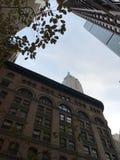Scape del edificio con los árboles imagen de archivo libre de regalías