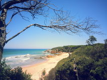 Scape della spiaggia Immagine Stock