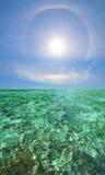 Scape di corallo con il bello Rainbow Immagini Stock Libere da Diritti