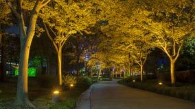 Scape di notte di Shanghai Fotografie Stock