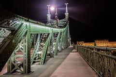 Scape scenico di notte del ponte di Budapest il Danubio e di libertà in lampadina Natura, paesaggio urbano fotografia stock libera da diritti