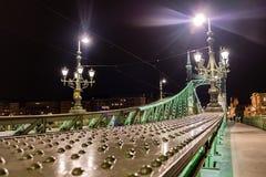 Scape scenico di notte del ponte di Budapest il Danubio e di libertà in lampadina Natura, paesaggio urbano fotografie stock libere da diritti