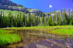 Scapegoat Wilderness Royalty Free Stock Photos