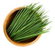 Scapes della erba cipollina in ciotola di legno sopra bianco Fotografia Stock
