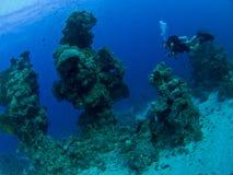 scaphandre d'horizontal sous-marin photos libres de droits
