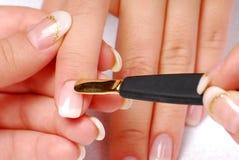 Scapola del manicure Fotografie Stock