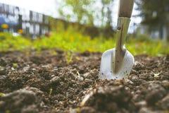 Scapola sui precedenti di suolo fertile Posto per il testo Il concetto di agricoltura Strumenti di giardino del metallo Fotografia Stock