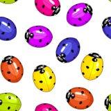 Scarabée de Ladybird. Photographie stock libre de droits