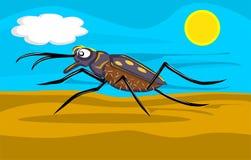 Scarabée de tigre fonctionnant dans l'illustration de désert Photo libre de droits