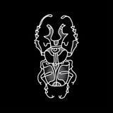 Scarabée de vecteur Insecte admirablement ornated Photos stock