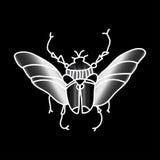 Scarabée de vecteur Insecte admirablement ornated Photo stock