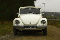 Scarabée de VW Image libre de droits