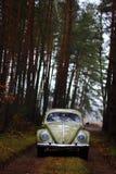 Scarabée 1957 de VW Image libre de droits