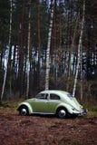Scarabée 1957 de VW Image stock