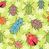 Scarabées colorés mignons illustration libre de droits