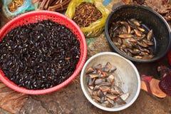 Scarabées de Fried Insect sur le marché local du Cambodge Photo stock