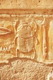 Scarab. Beetle carved on a wall of a temple in Luxor (Egypt Royalty Free Stock Photo