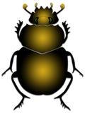 scarab Στοκ φωτογραφία με δικαίωμα ελεύθερης χρήσης