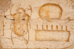 Scarab beetle. Egypt. Carving of Scarab beetle in the Temple of Hatshepsut. West Bank, Luxor, Egypt Stock Photography