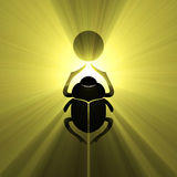 Scarab beetle Egyptian symbol sun flare Stock Images