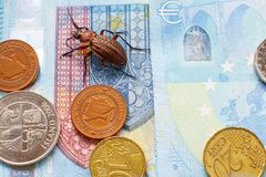 Scarab?e rectifi? sur le billet vingt euros, petites pi?ces de l'Europe photos libres de droits