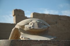 Scarab. Made of granite, cirrus clouds in background Royalty Free Stock Photos