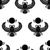 Scarab silhouette Royalty Free Stock Photo