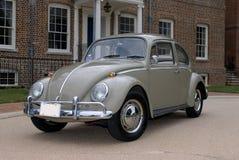 Scarabeo 1966 di Volkswagen immagine stock libera da diritti