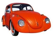 Scarabeo arancione Fotografia Stock