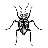 Scarabeo dell'insetto Immagini Stock